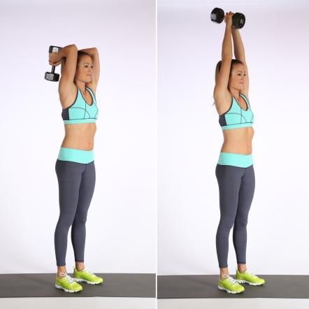 Courtesy of http://media1.popsugar-assets.com/files/2014/07/08/859/n/1922729/3eba25801025d5de_overhead-triceps/i/Overhead-Triceps-Extensions.jpg